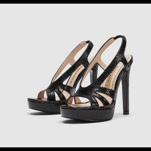 Zara elegant collection